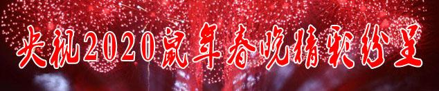 2020央视春晚节目