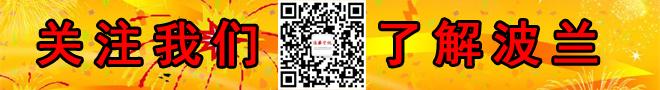 波华资讯微信公众号